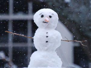 kardan-adam
