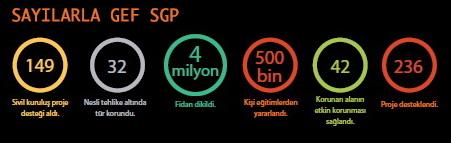 sayilarlar_gef_sgp